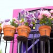 Flowers balcony in pink and purple at Ibiza — Stock Photo