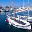 Llaut traditional latin sail boat in Formentera — Stock Photo #7320121