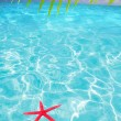 Starfish as summer symbol in tropical beach — Stock Photo