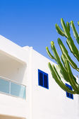 White mediterranean cactus house in Formentera — Стоковое фото