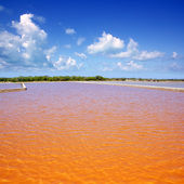 Formentera Ses Salines saltworks red water — Stock Photo