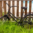 Black grunge bicycle aged on a wood fence — Stock Photo