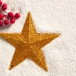 Royalty-Free Stock Photo: Christmas golden star on snow with berries