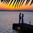 Couple in love back light silhouette at lake — Stock Photo