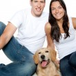 Couple in love puppy dog golden retriever — Stock Photo #7475951