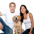 Couple in love puppy dog golden retriever — Stock Photo #7476149