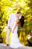 Couple kissing in honeymoon outdoor park — Stock Photo