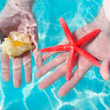 Hands starfish and seashell in tropical water — Stock Photo