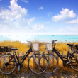 Bicycles couple parked in Formentera beach — Stock Photo