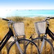 Bicycles couple parked in Formentera beach — Stock Photo #7574613
