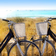 Bicycles couple parked in Formentera beach — Stockfoto