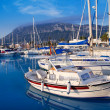 Denia marina port boats and Mongo — Stock Photo #7578510