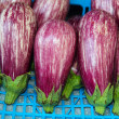 Eggplant vegetables in row on market — Stock Photo #7874885