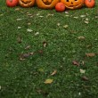 Pumpkins for Halloween - Stock Photo