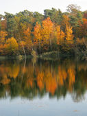 Autumn by the lake — Stock Photo
