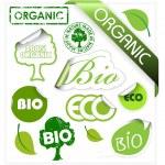 conjunto de elementos orgánicos, eco, bio — Vector de stock