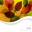 Autumn abstract floral background — Stock Vector #6858297