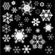 Various snowflakes on black — Stock Vector