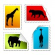 Set of safari post stamps  — Stock Vector