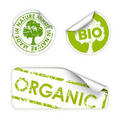 Set of bio, eco, organic labels — Stock Vector