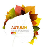 Autumn abstract floral background — Stok Vektör
