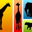 Animals from safari, zoo — Vettoriali Stock