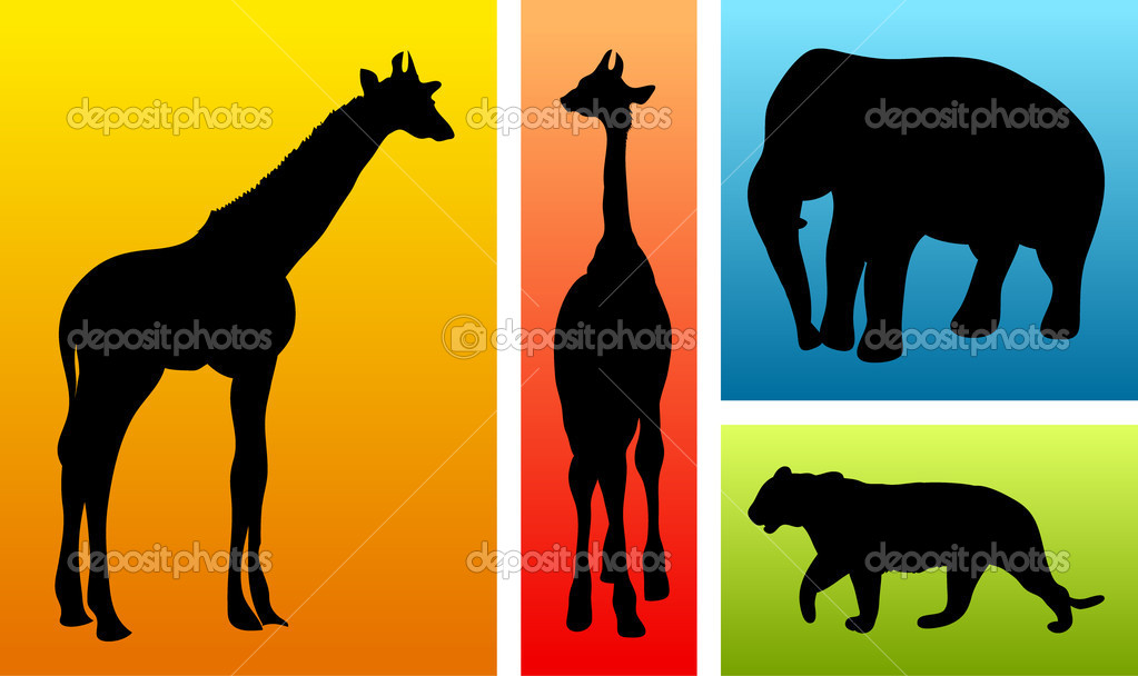 Animals from safari, zoo on colorful backgrounds — Stock Vector #7063359
