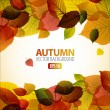 Vector Autumn abstract background with colorful leafs - Grafika wektorowa