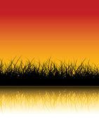 Vector grass background — Stock Vector