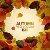 Vektorové podzimní pozadí abstraktní s barevnými listy — Stock vektor