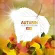 Vector autumn background with a card — Stock Vector