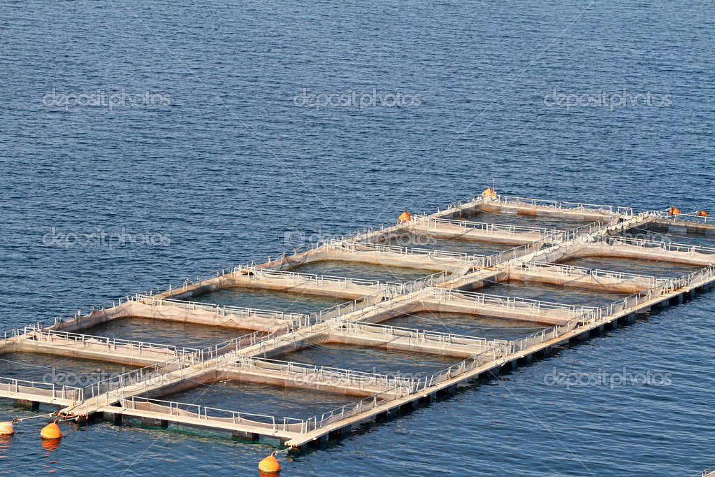 Fish farms in Peloponesse, Greece — Stock Photo #7912327