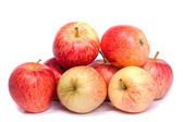 Fresh royal gala apples — Stock Photo