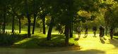Running at park — Stock Photo