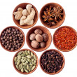 Wooden bowls full of different spices isolated — Stock Photo