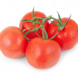 Bunch of red tomato isolated on a white — Stock Photo