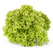 Stock Photo: Fresh green lettuce leaves isolated on white
