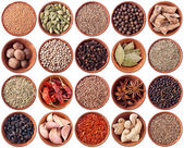 Wooden bowls full of different spices — Stock Photo