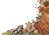Background of different spices — Stock Photo