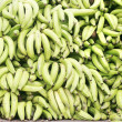 Green plantains (bananas) — Stock Photo