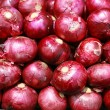 Harvested Red Onions in background — Foto Stock