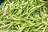 Many green beans (Phaseolus vulgaris L.) on a pile — Stock Photo
