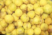 Oranges in mesh bag series — Stock Photo
