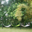 Hammocks out on sunny yard near forest — Stock Photo #7504464