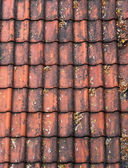 Old red roof tiles — Stock Photo