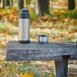 Stock Photo: Thermos