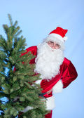 Santa and Christmas tree — Stock Photo