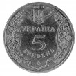 Ukrainian coins 5 grivna on the white background — Stock Photo