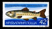 BULGARIA - CIRCA 1983 — Stock Photo