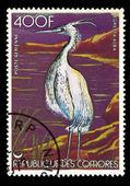 COMORES - CIRCA 1986 — Photo